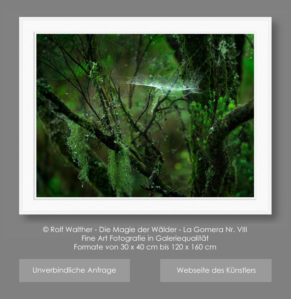 Fine Art Photo La Gomera